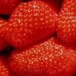 fraises-OK