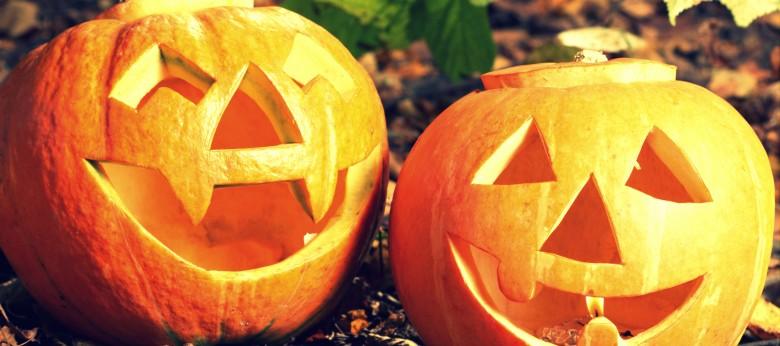 Halloween aux poussins