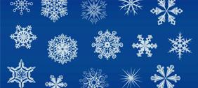 snowflakes 2011