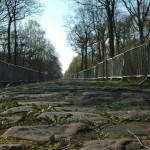 2009, allenamento Paris – Roubaix, Arenberg