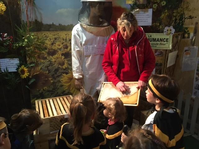 test musee de l'abeille