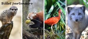 zoo banniere
