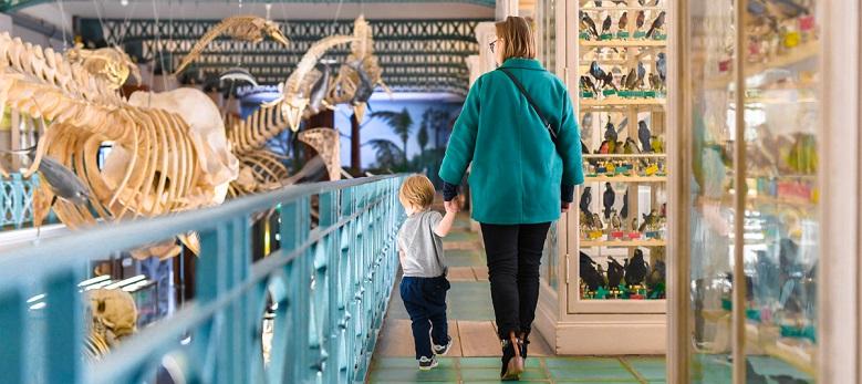 Visite du musée d'histoire naturelle d'une mére et son fils
